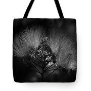 Mimosa Flowers Tote Bag