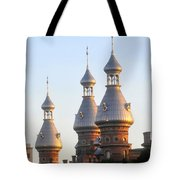 Minarets Over Tampa Tote Bag by David Lee Thompson
