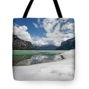 Minewanka View Tote Bag