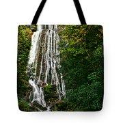 Mingo Falls - Gsmnp Tote Bag