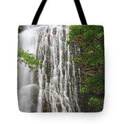 Mingo Falls Closeup Tote Bag