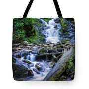 Mingo Falls Two Tote Bag