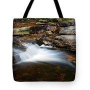 Mini Falls On The Peterskill I Tote Bag