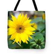 Mini Sunflower And Bud Tote Bag