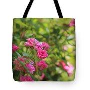 Miniature Fuchsia Roses Tote Bag