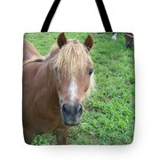 Miniature Horse Tote Bag