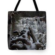 Mink Falls - The Hideaway Tote Bag