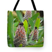Mink Protea Flower Tote Bag