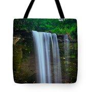 Minneopa Falls Tote Bag