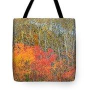 Minnesota Autumn 55 Tote Bag