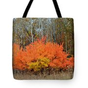 Minnesota Autumn 57 Tote Bag