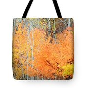 Minnesota Autumn 58 Tote Bag