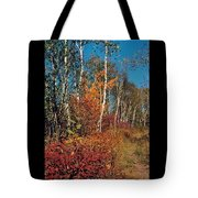 Minnesota  Autumn Path Tote Bag
