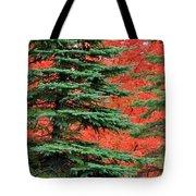 Minnesota Autumn Spruce Maple Tote Bag