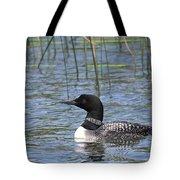 Minnesota State Bird Tote Bag