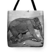 Minnie The Elephant, 1920s Tote Bag
