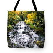 Minnihaha Falls In Autumn Tote Bag