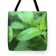 Mint Mood Tote Bag