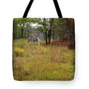 Miracle In The Meadow Tote Bag