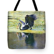 Mirror Mirror On The Marsh Tote Bag