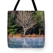 Mirror Mirror On The Pond Tote Bag