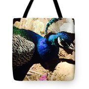 Mirror Mirror On The Wall 1 Tote Bag