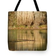 Mirror Spring 1 Tote Bag
