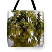 Mirrored Reflection Tote Bag