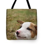 Mischief On The Farm Tote Bag