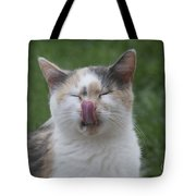 Miss Kitty Tote Bag
