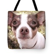 Miss Lily Tote Bag