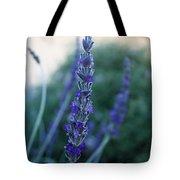 Mission Lavender Tote Bag