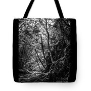 Missisquoi River In Vermont - 1 Bw Tote Bag