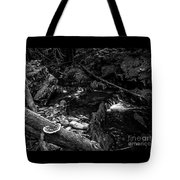 Missisquoi River In Vermont - 2 Bw Tote Bag