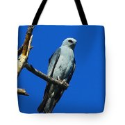 Mississippi Kite Tote Bag