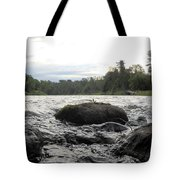 Mississippi River Rocks At Dawn Tote Bag