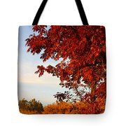 Missouri Fall Tote Bag