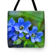 Missouri Wildflowers 5  - Polemonium Reptans -  Digital Paint 1 Tote Bag
