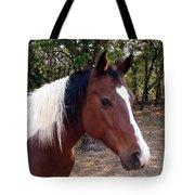 Missy 1 Tote Bag