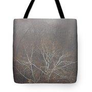 Mist Over The Hudson Tote Bag