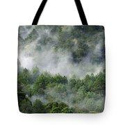 Mistico De San Jose De Pacifico Tote Bag