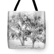 Mistletoe Tree In Black And  White Tote Bag