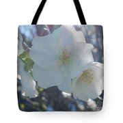 Misty Cherry Blossoms Tote Bag