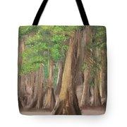 Misty Forrest Tote Bag