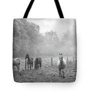 Misty Morning Horses Tote Bag