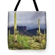 Misty Morning Peralta Tote Bag