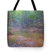 Misty Morning Woodscape Two Tote Bag