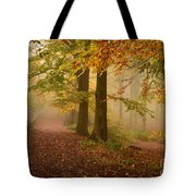 Misty Pathways  Tote Bag