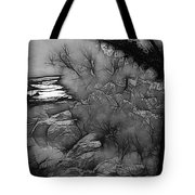 Misty River Tote Bag by Elaine Teague