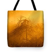 Misty Swamp Sunrise Tote Bag